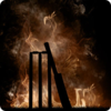 Icona di Ashes Cricket