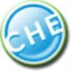 Icona di Bit Che