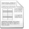 Curriculum Vitae Europass rev. 251