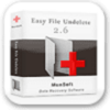 Easy File Undelete Easy File Undelete 3.0