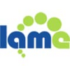 LAME (Lame Ain't an MP3 Encoder) 3.99