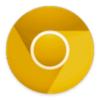 Google Chrome Canary 55.0.2873.0