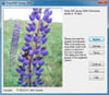 Sharp IMG Viewer 1.0.5767.17338