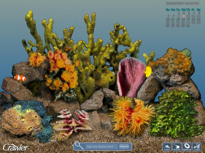 3d tropical aquarium screensaver download gratis for Desktop animati gratis
