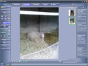 Screenshot 1 of FotoMix 9.2.7