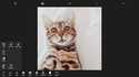 Screenshot 1 of PicsArt - Photo Studio for Windows 10 1.0.0