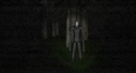 Screenshot 2 of Slender: The Eight Pages Beta 0.9.7