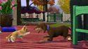 Screenshot 7 of The Sims 3 Animali & Co. Expansion Pack 3